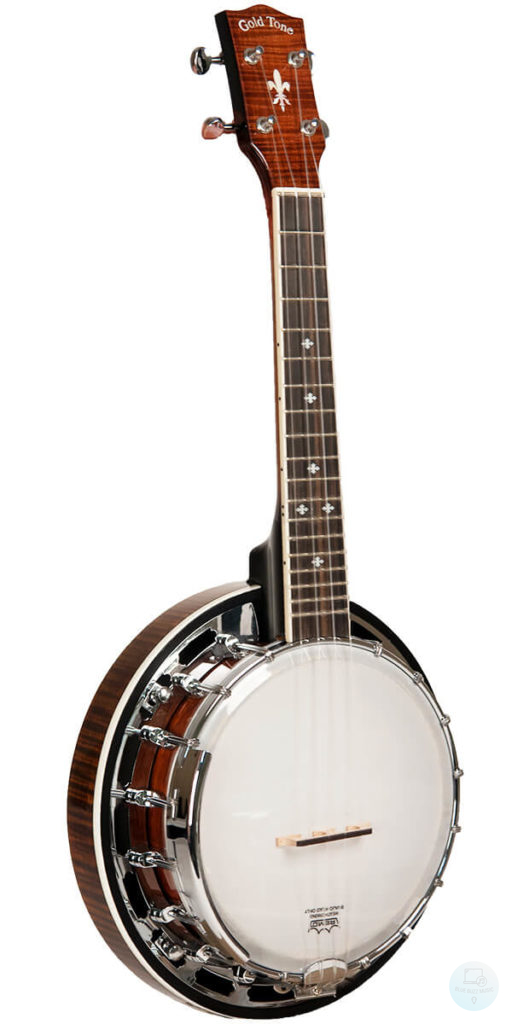 Gold-Tone Music Group - best professional banjo for beginners, best for the money