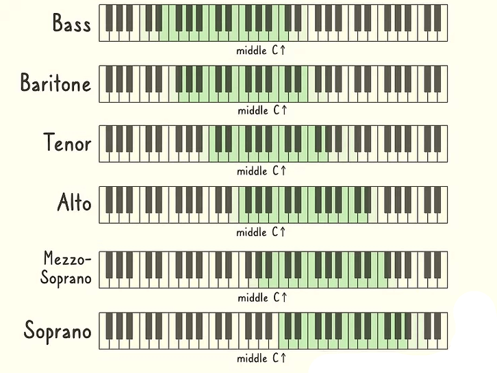 vocal range chart highest to lowest scale for singers