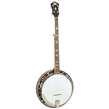 Recording King Banjos - best vintage banjo brands