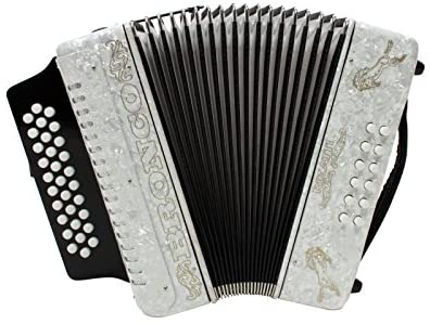 Rizatti Bronco - best cheap affordable budget piano accordion
