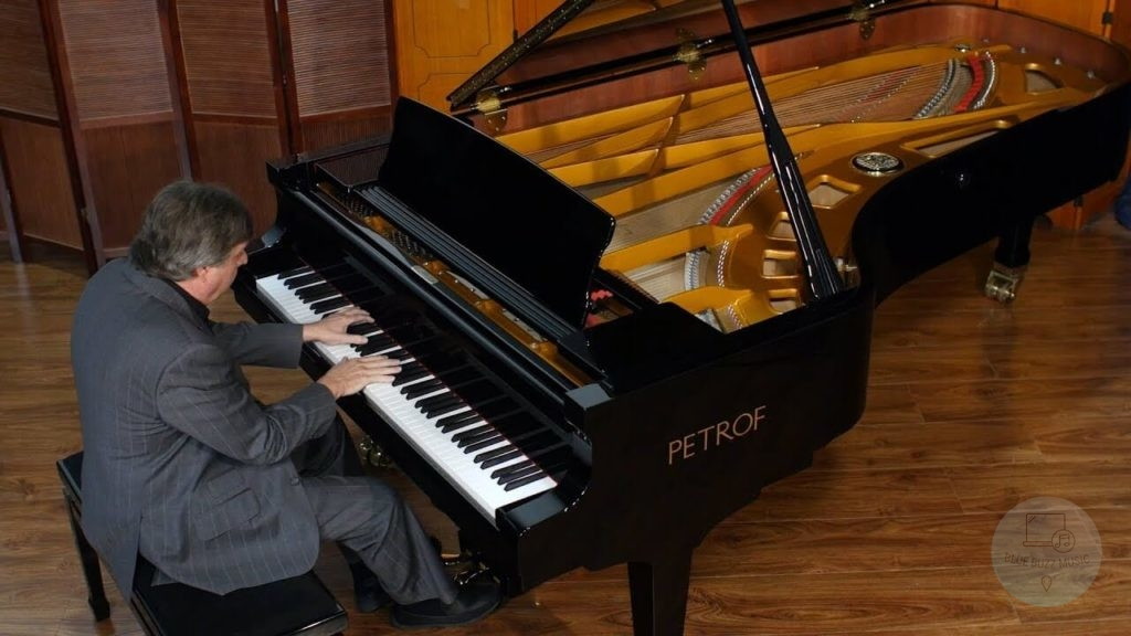 The Grand Piano dimentions and prices - types of grand pianos with pictures
