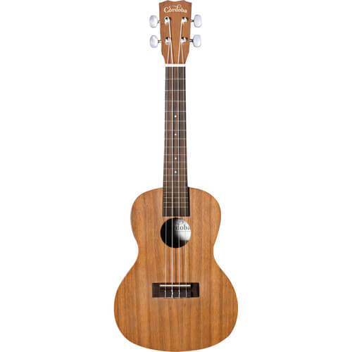 Cordoba Concert Ukulele Pack - cordoba up100 review