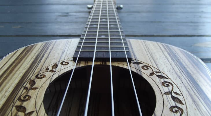 Reno Ukulele Review – What You Should Know